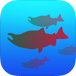 Fish Count app screenshot - Sockeye, King Salmon and Chinook species